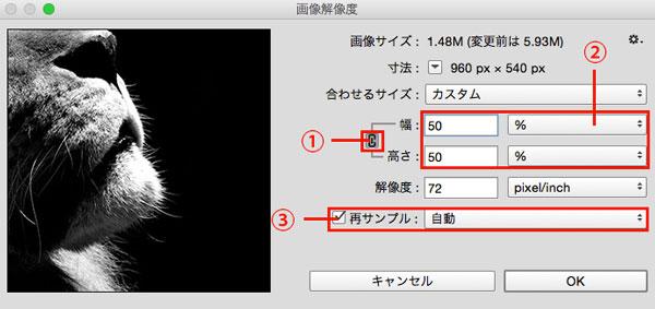 photoshop_change_image_size_2