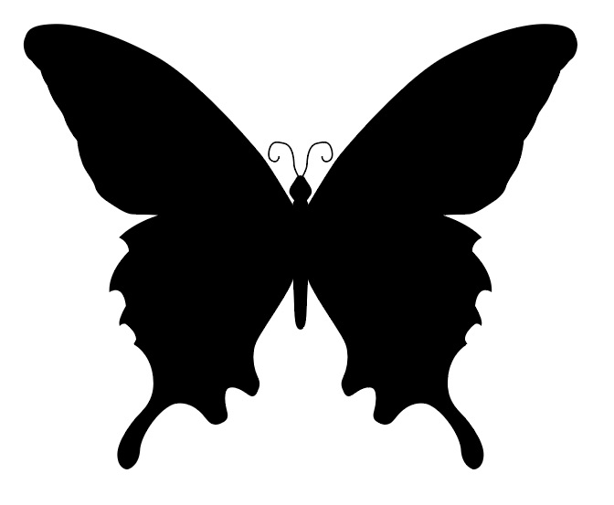illustrator_transform_tool_13